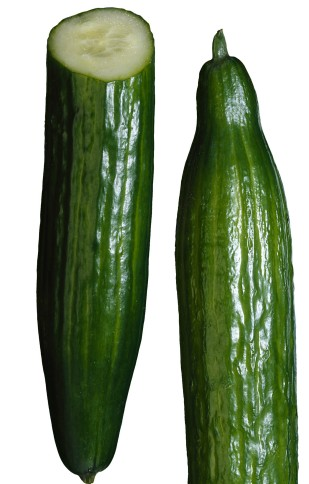 "The image ""http://www.assuredproduce.co.uk/resources/000/151/337/cucumber_main.jpg"" cannot be displayed, because it contains errors."